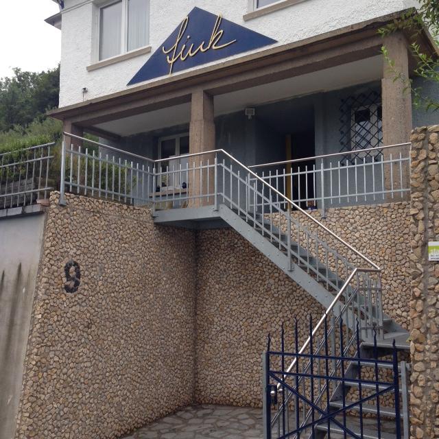 Treppenaufgang Aussen Villa Fink Schramberg