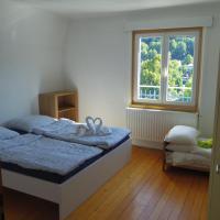 Zimmer1(1)